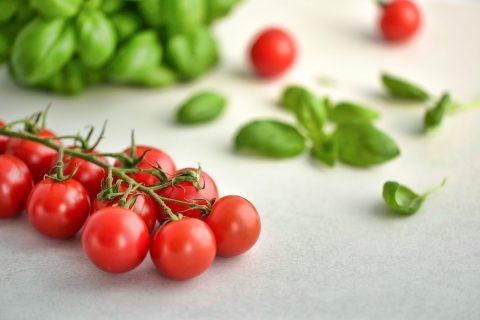 cultiver-légumes-bio